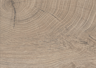 Oak End-Grain